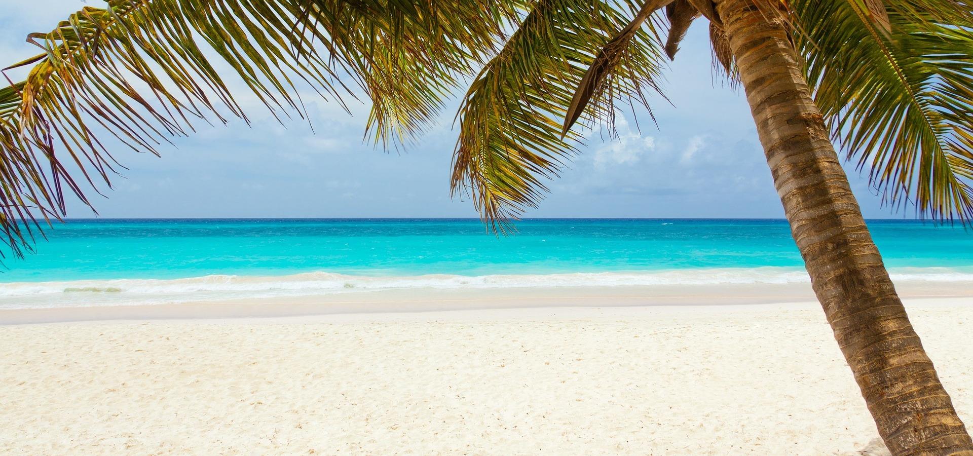 pláž-ořez